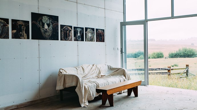 """Hanging on the walls are portraits of Lucy's sheep. """"You can imagine how difficult it is to get a sheep to stand still, so I get a head-and-face shot with my camera and work the painting from the photograph,"""" she says."""