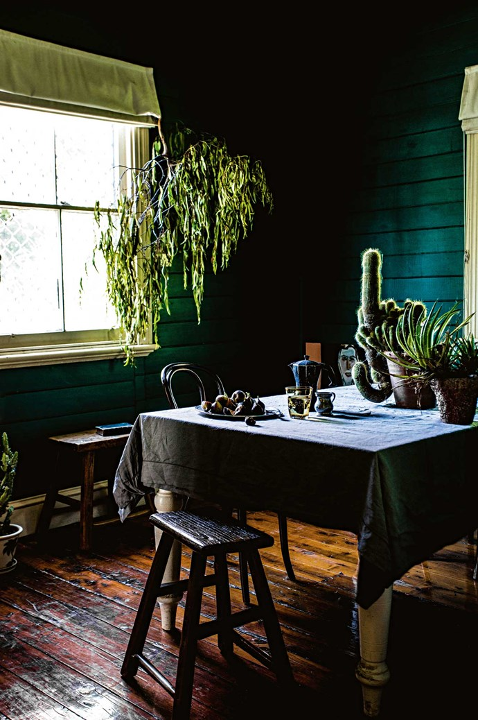 "A collection of succulents on the table. Nick believes gardeners are born, not made. ""You accept your lot and that is extremely powerful... becoming aware of your hands all the time and your body becoming stronger.""  