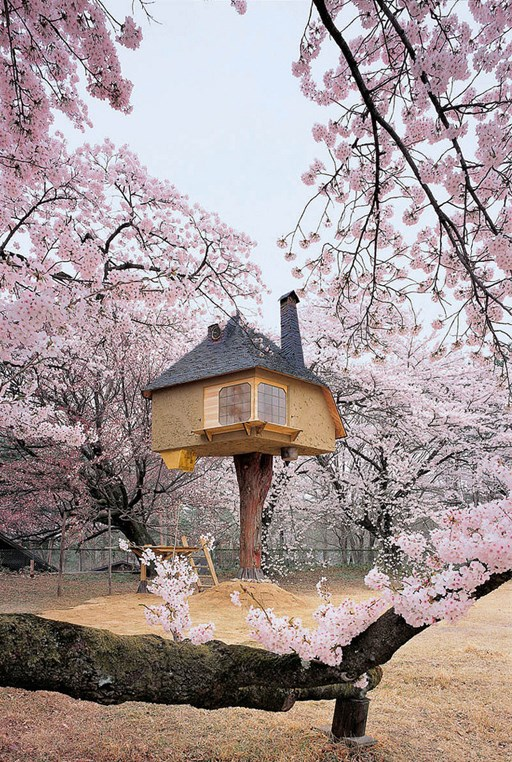 Visitors can admire cherry blossoms in full bloom from this teahouse in the Kiyoharu Shirakaba Museum, Hokuto, Japan. The treehouse was designed by architect Terunobu Fujimori to be earthquake resistant and is supported on a sturdy cypress trunk. _Image courtesy of [My Modern Met](http://www.mymodernmet.com/profiles/blogs/tetsu-teahouse-hokuto-japan)_