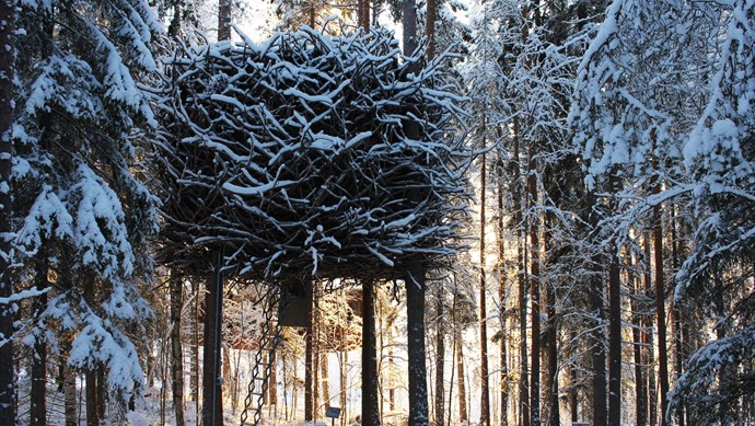 The Bird's Nest at the Treehotel offers a secret hideaway in the woods of Harads, Sweden. Literally nested in the forest, the treehouse is buttressed by surrounding trees and offers a retractable staircase into a sleek, cosy interior. Or so a little birdy told us. _Image courtesy of [Tripadvisor](https://www.tripadvisor.com.au/Hotel_Review-g6200614-d1872348-Reviews-Treehotel-Harads_Norrbotten_County.html)_