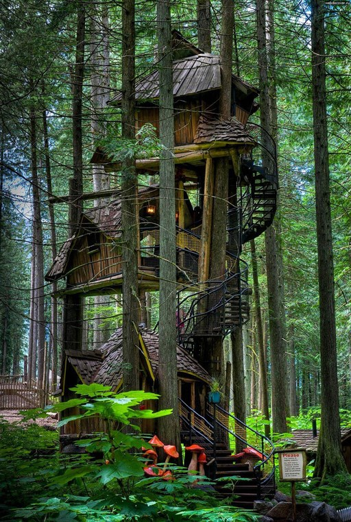 British Columbia's tallest treehouse can be found in the aptly named Enchanted Forest in Canada. The public parkland began as a retirement project for artist Doris Needham, who hand-crafted folk art figurines. The treehouse rises 15 metres into the forest canopy, towering over a fairytale landscape. _Image courtesy of [imgur](http://imgur.com/gallery/NOlPZGF)_