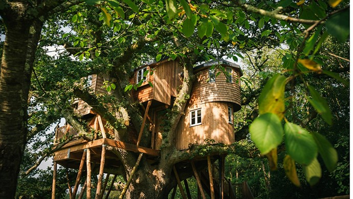 Treetops Treehouse in Chumleigh, England, is built into an oak tree over two centuries old. Suites interweave with tree limbs, the children's play room includes a ladder fashioned from branches, and the furniture is made from salvaged oak. Step out onto the deck and breathe in the delicious scent of Douglas Fir trees. _Image courtesy of [The Fox and Hounds Hotel](http://www.foxandhoundshotel.co.uk/news-events-/luxury-tree-house)_