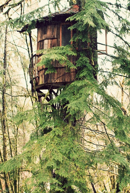 Treehouse Point in Issaquah, Washington State, USA, is all about meditation, yoga, destressing - and of course, treehouse architecture. This getaway spot enjoys nature at a calming tempo - wake up to birdsong and the sound of the neighbouring river. _Image courtesy of [Pure Green Mag](http://www.puregreenmag.com/pure-green-blog/treehouse-point)_