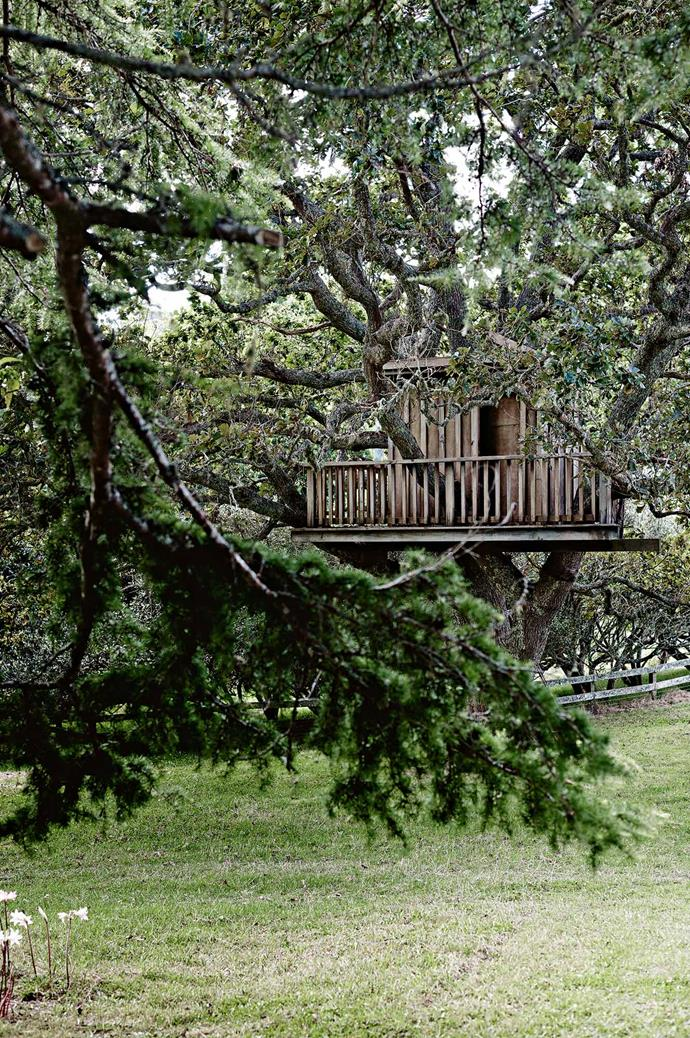 A treehouse that once starred in a television commercial now lives in the garden.