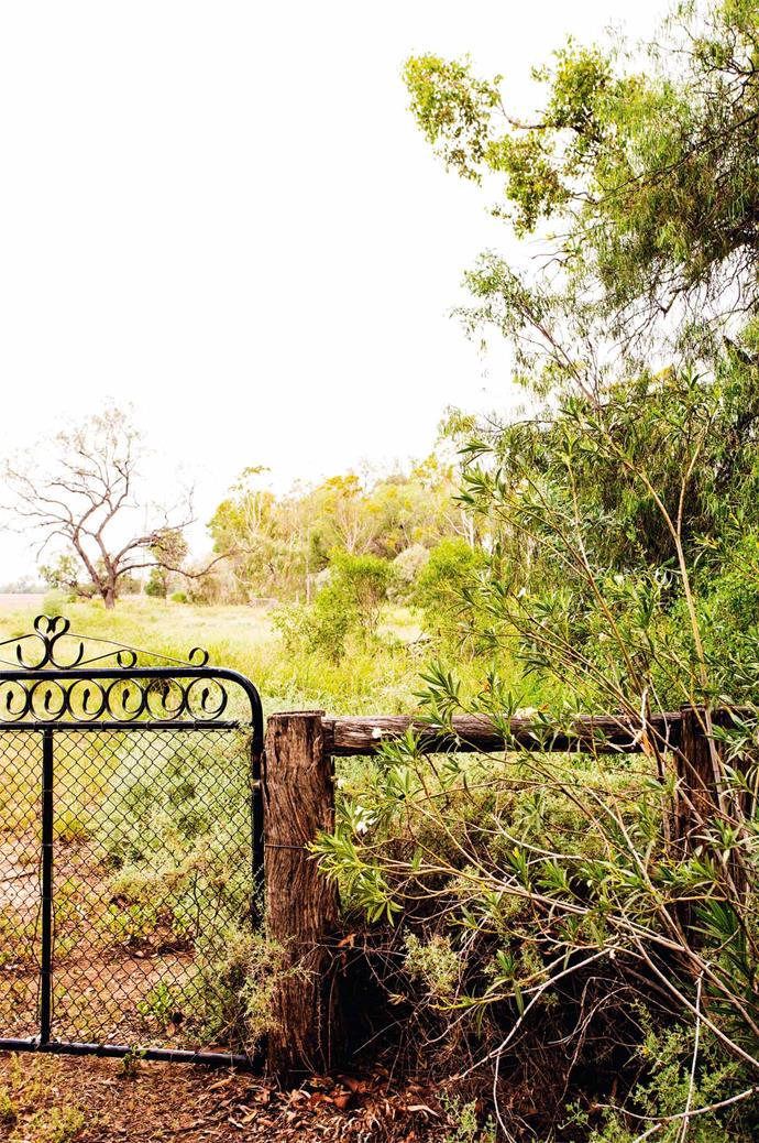 An original garden gate opens up onto Moree's rich soil plains, where the Livingston family grows cotton.