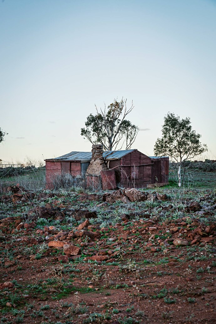 "An old miner's hut rests on stony tableland.  The late nature photographer, Kim Piddington, was drawn to the isolated town of Tibooburra, remarking ""Everything is subtle: most people that pass through on their way to somewhere else get caught up here."""