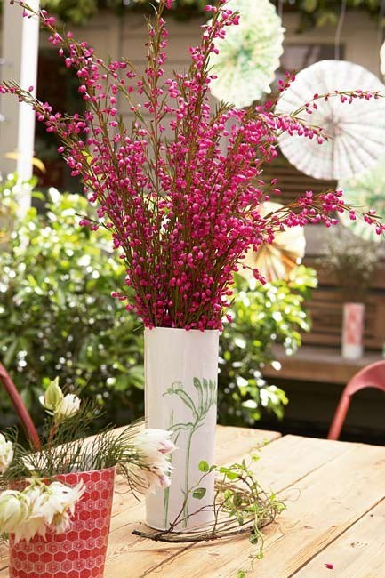 Reeds of red fill this vase for a simple yet effective Christmas floral arrangement.  | Photo: Sam McAdam-Cooper