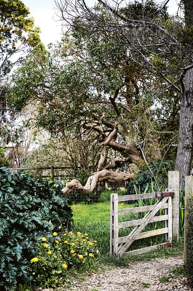 """Tracie Ellis, the founder of [AURA Home](https://www.aurahome.com.au/