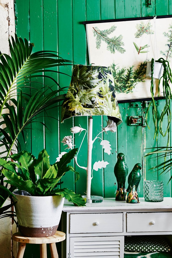 3. Go for monochrome. A green plant against a green wall? It works. Up the green factor with vases, tchotchkes and prints. | Photo: Lisa Cohen