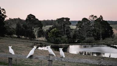 Southern comfort: Eat, shop and play on NSW's South Coast