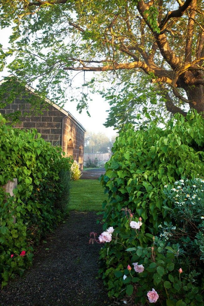 """An informal country garden, brimming with David Austin roses plays up the charm of the [historic grounds of Correagh](https://www.homestolove.com.au/correagh-garden-13150