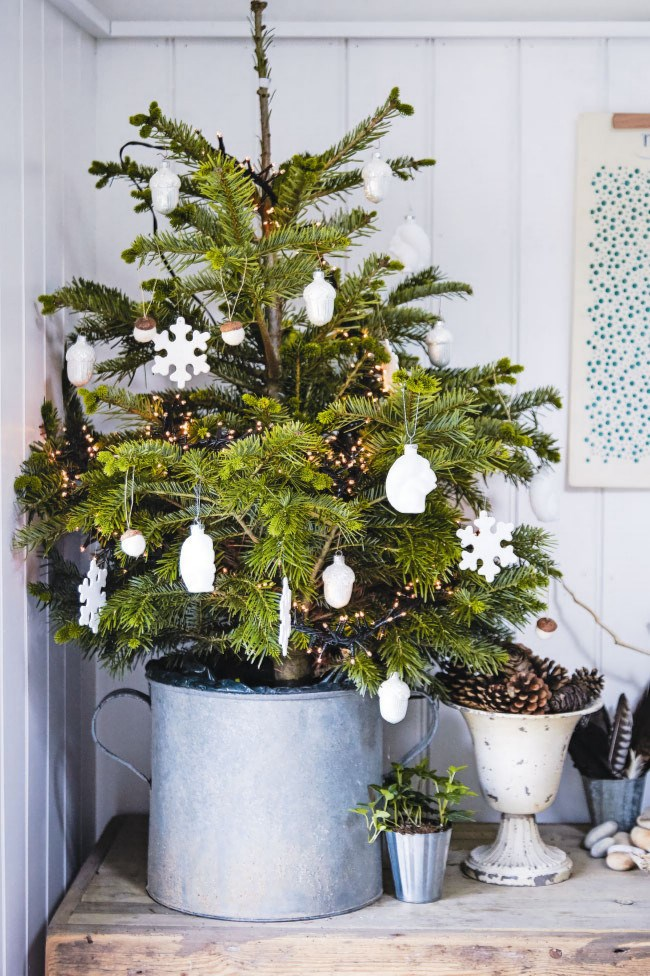 A pot plant may be a Christmas tree's low-maintenance cousin: demure, well-kept and a tidier guest in your home. If you don't have a lot of space to work with, this is a genius solution.  | Photo: Dan Duchars