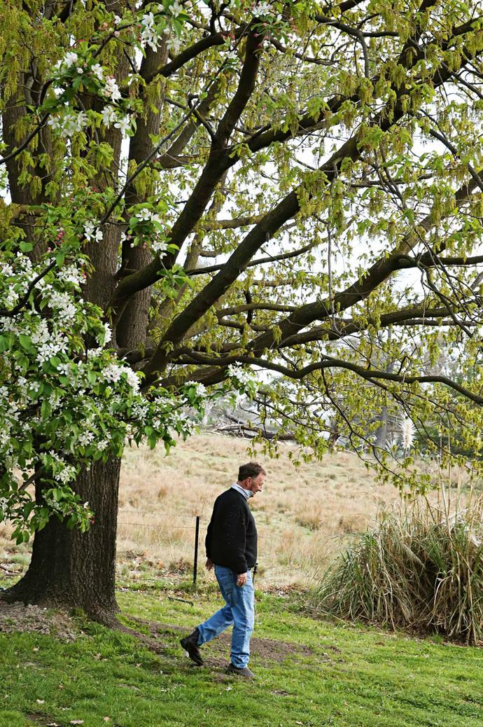 Peter strolls through his garden sanctuary.