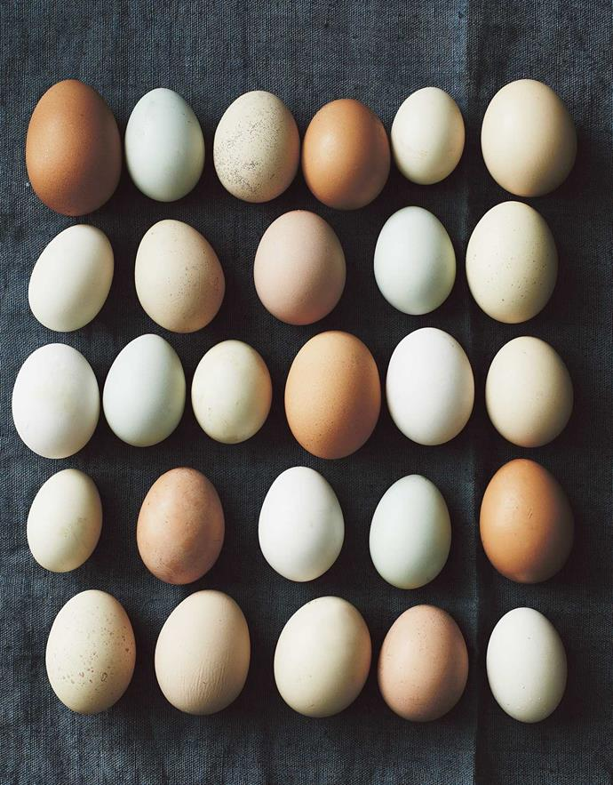 Eggs come in all sorts of shapes, sizes and colours.