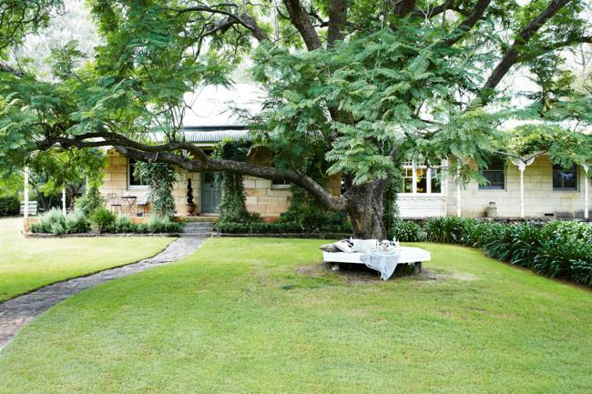 For the Rieger family, including Zac their Maltese terrier, under the jacaranda tree is an especially favoured spot. Behind it is the 1970s addition connecting the main house on the left with the former miner's cottage. | Photo: Michael Wee