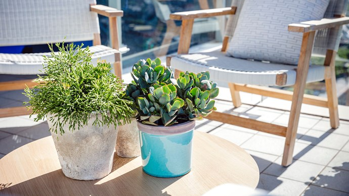 With more and more of us living in an urban environment, it's important to make the most of our outdoor spaces to create an enjoyable and functional area, and the perfect getaway from the everyday. | Photo: Garden Society