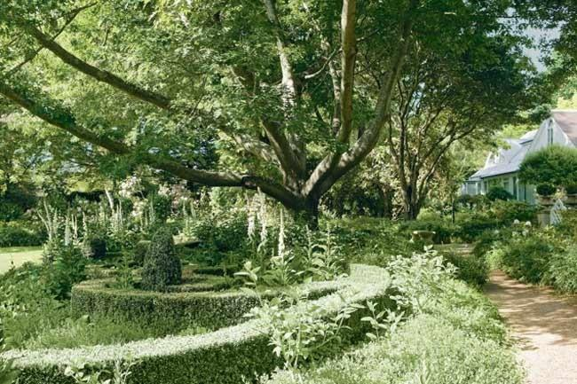 """For decades, Kennerton Green was a beloved formal garden open to the public in Mittagong, in the NSW Southern Highlands. Mature trees, such as the golden elm, oaks, and the flowering cherries, are treasured, while the magnificent [Wisteria floribunda](https://www.homestolove.com.au/plant-guide-wisteria-9531