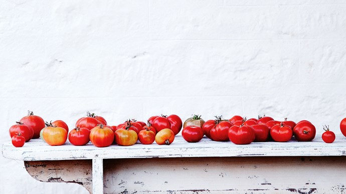 1. Tomatoes. Prepare your garden bed before temperatures rise above 35°C (the most extreme climate in which tomato flowers can still pollinate).