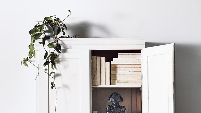 Indoor plants add warmth, colour and life to our homes. Where space is tight, look for cascading plants to spill over the edge of shelves, benches or even drip from hanging baskets suspended from the ceiling. Just ensure the plant receives bright light for most of the day but is out of direct sunlight and cold draughts. Water when the potting mix begins to dry out and let water drain. From time to time, leave them outdoors to regenerate, and repot them into fresh potting mix.With that in mind, these four plants are ideal choices to drape in your home... | Photo: Mark Roper