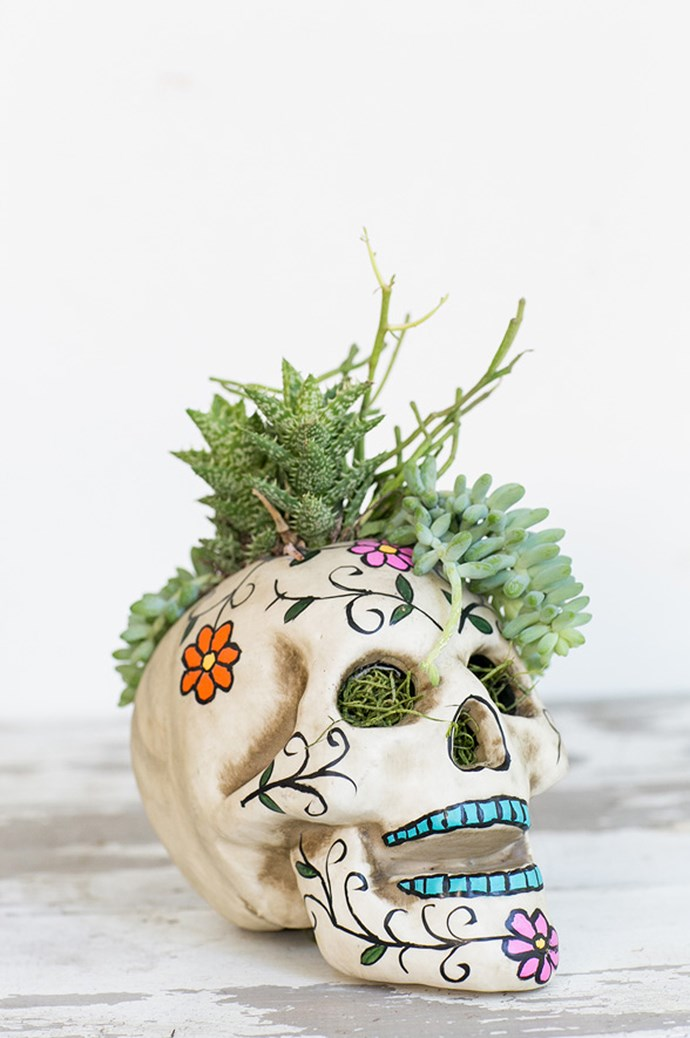 Alas poor Yorick! I planted him well. With their eye sockets and open craniums, skulls make surprisingly spacious planters for wild greenery. Image and tutorial via [Sugar and Charm](http://sugarandcharm.com/2014/10/easy-halloween-skull-centerpiece.html?section-1).