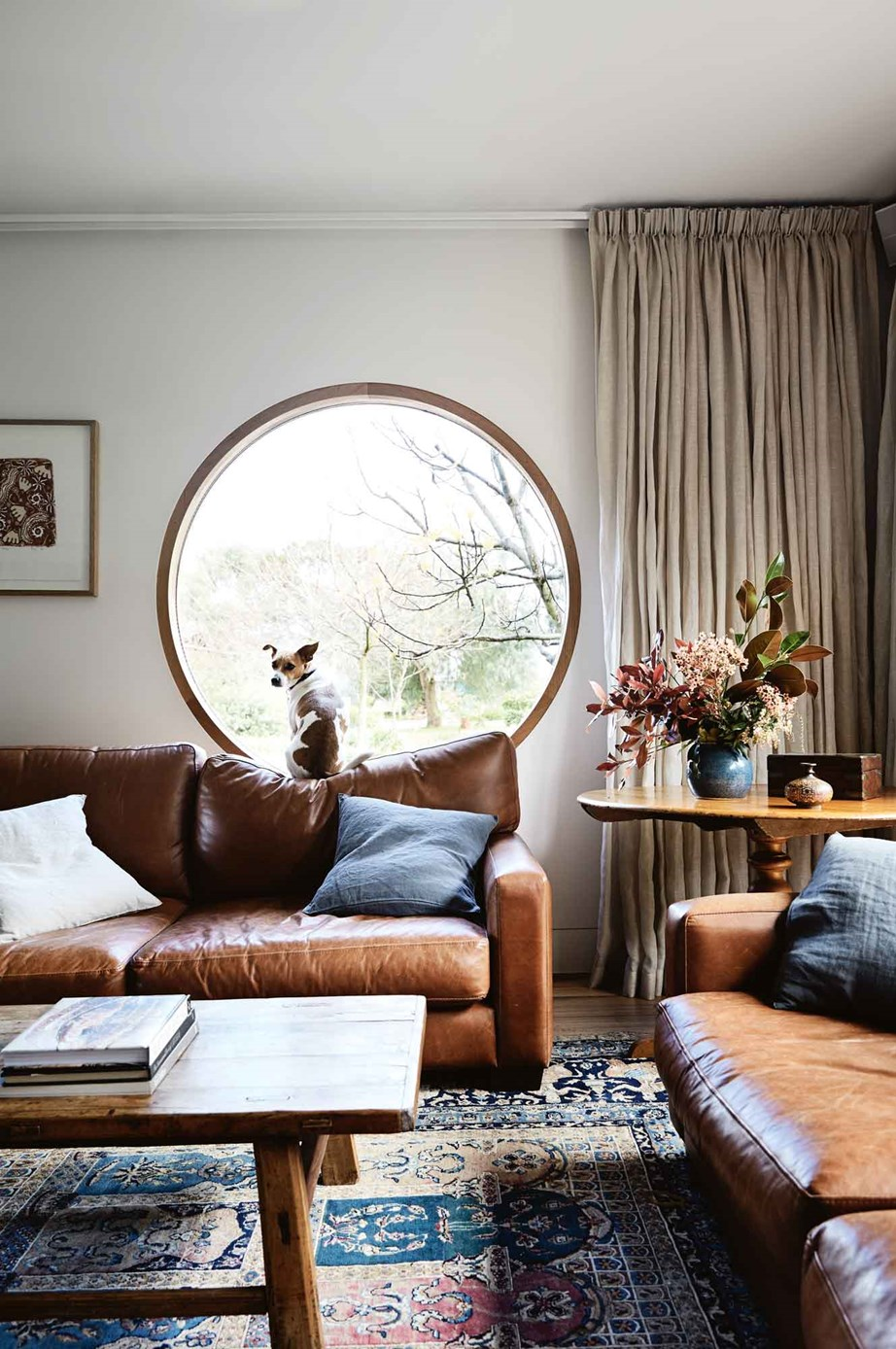 "Harry, a rescued Jack Russell/foxy cross keeps a lookout at the porthole window in the sitting room of this [Mornington Peninsula farmhouse](https://www.homestolove.com.au/farmhouse-extension-australia-13815|target=""_blank""), where heavy curtains, worn leather sofas and timber furniture create a warm and inviting ambience."