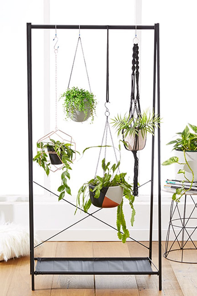 6\. Make it mobile. If the plants you crave don't like full sun all the time, make them mobile by handing them on a portable wardrobe frame. That way they can be moved from indoors to out whenever the mood takes you (or them). Image via [Kmart](http://www.kmart.com.au/)
