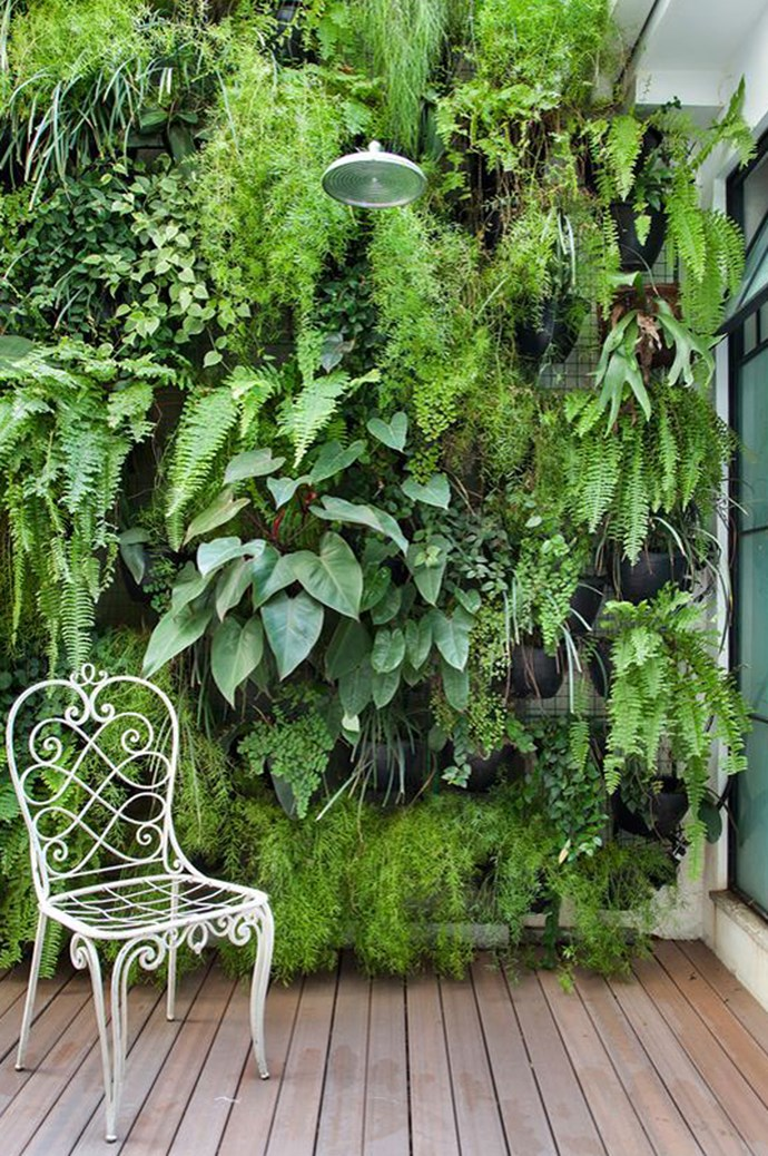 4. Go vertical. Figure out which wall of your balcony is the most protected and install a vertical garden instead. Not only are they sweeping and dramatic, they're compact and easy to care for. Image via Yard Surfer