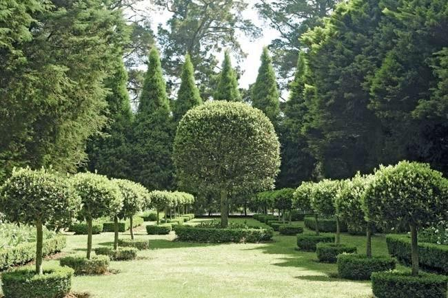 80 clipped bay trees are geometrically arranged in hedged beds in the formal manner of a medieval enclosed garden. This area was once a tennis court.