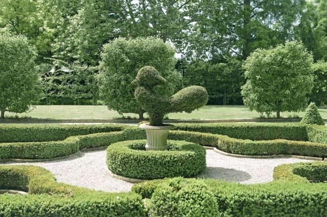 Expertly manicured hedges and topiary form green garden sculptures along the mazes and paths. | Photo: Sam McAdam-Cooper