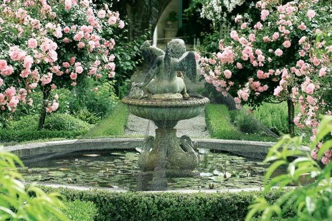 A classic fountain featuring an angel surrounded by pink standard roses.