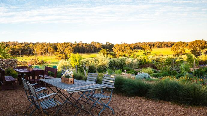 A sensory garden in WA's Geographe wine region is an educational experience that takes the guess work out of food and wine pairing.  Inspired by her grandfather's flower and vegetable garden, winemaker Cathy Howard designed a formal potager-style garden where visitors can touch, smell and crush herbs and edible flowering plants as they enjoy a glass at Whicher Ridge winery. 