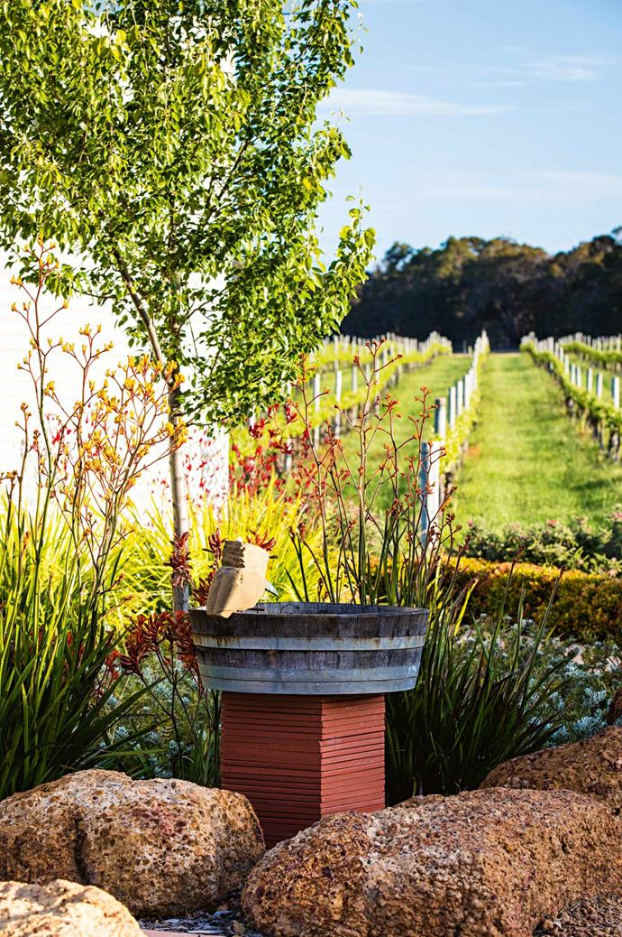 The kookaburra birdbath sculpture was made by Folko Kooper to coincide with the opening of the cellar door. | Photo: Claire Takacs