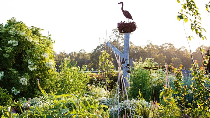 Overlooking the garden is a heron sculpture is by Tasmanian sculptor Folko Kooper, made in tribute to a pair of grey herons that live nearby. | Photo: Claire Takacs