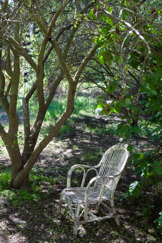 An inviting spot to relax in the shade.  | Photo: Simon Griffiths