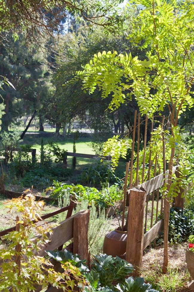 Gardens around the property.  | Photo: Simon Griffiths
