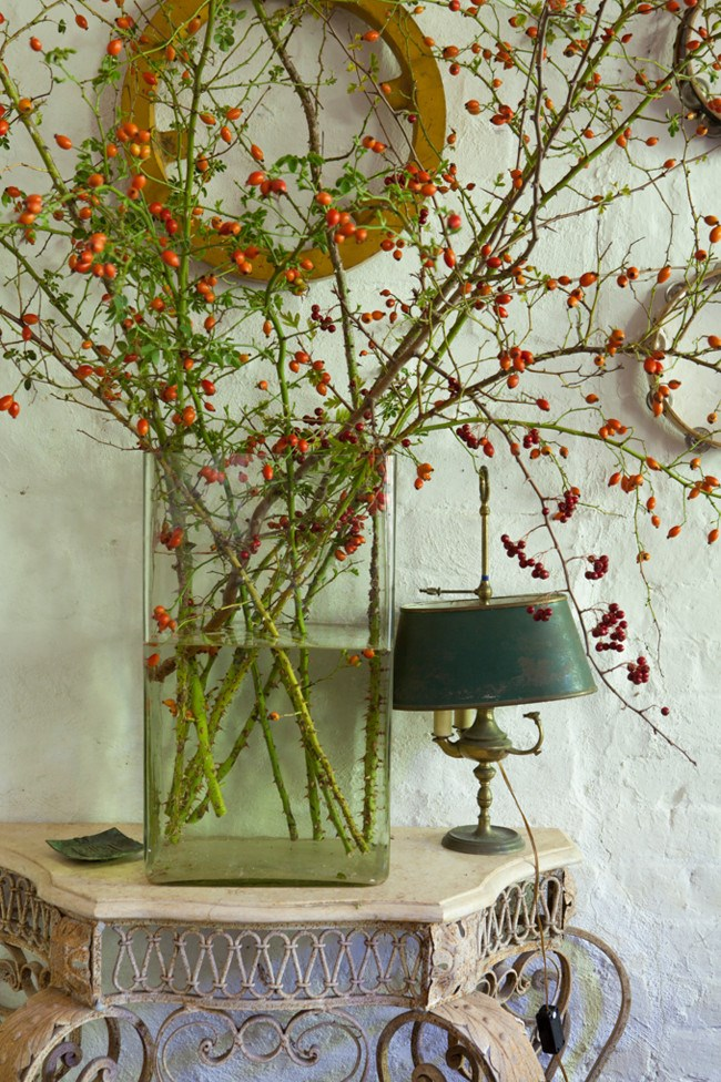 Rose hips make for an unusual and striking display.  | Photo: Simon Griffiths