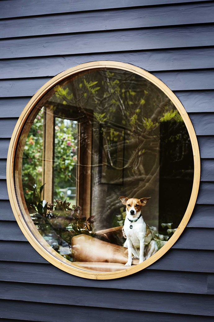 Harry enjoys views of the garden from the round window in the living room.