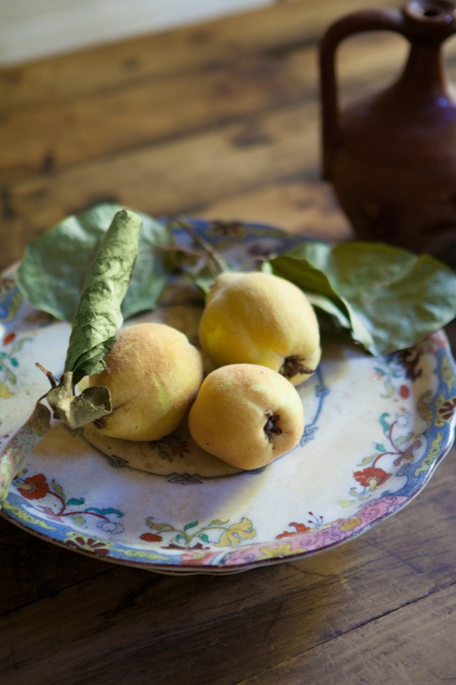 Quinces from the property's orchard on an antique cake stand bought at auction. | Photo: Simon Griffiths