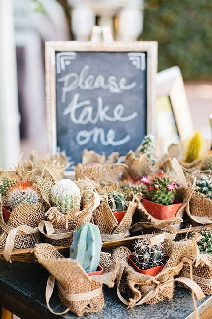Tiny, potted plants are sweet party favours – use some hessian and twine to make them extra special. Image via [Happy Wedd](http://happywedd.com/)