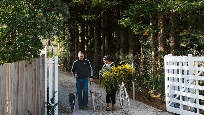 Simon and Kasturi Wren walking along their tree-lined driveway in Leura with their beloved whippets, Coco and Toby.