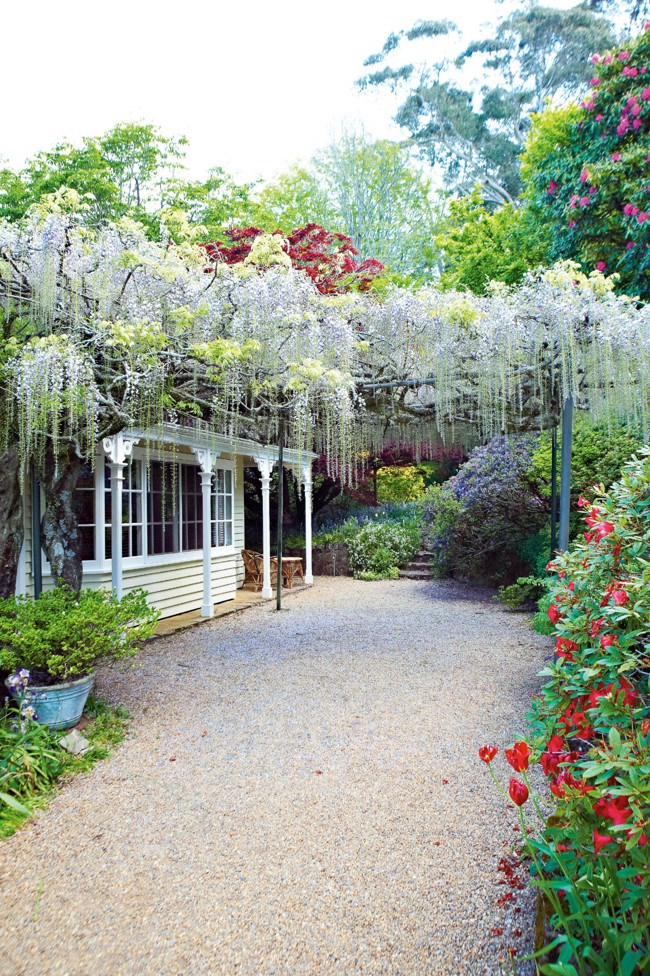 """[Nooroo Garden on Mount Wilson](https://www.homestolove.com.au/mount-wilson-garden-13257