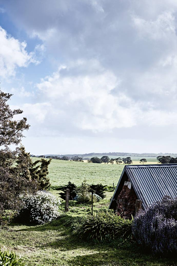 The house on  a rise, overlooking surrounding farmland.  | Photo: Mark Roper | Styling: Lee Blaylock