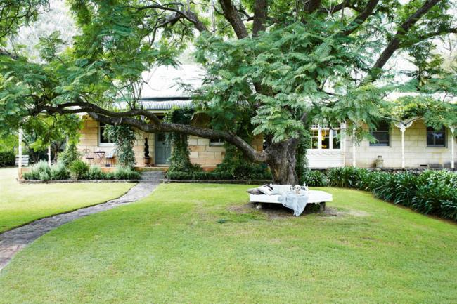 **6.** The base of the jacaranda tree is a favourite spot for the owners of this 1890s sandstone home. Having weather-tolerant furniture in favourite places, or close to hand, makes it easy tfor you – or your [pet](http://www.homelife.com.au/homes/food/choose+the+right+pet+for+your+family,4106) \- to rest and relax. | Photo: Michael Wee