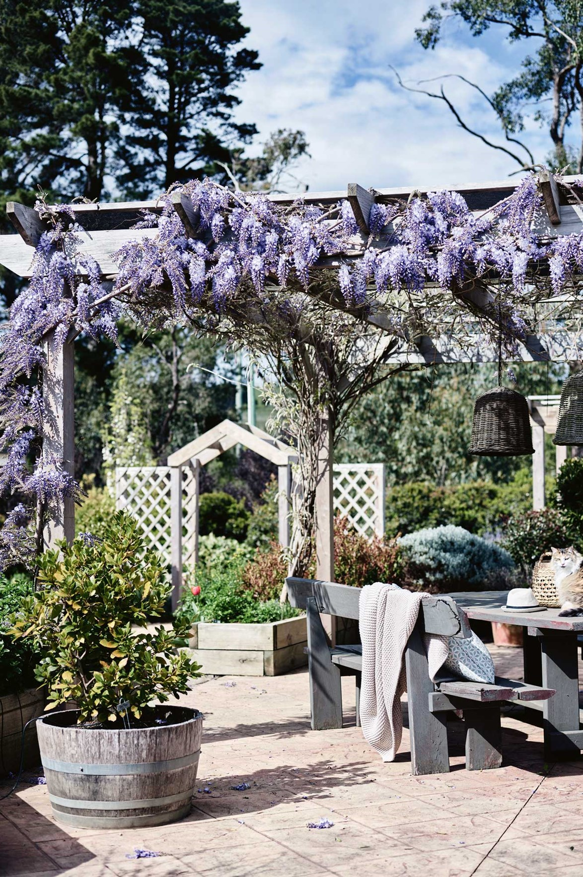 "Inspired by garden visits in France, the owners of this [country home on Victoria's Mornington Peninsula](https://www.homestolove.com.au/new-build-country-home-13977|target=""_blank"") have created and paved patio ensconced by wisteria arbours, overlooking their productive orchard and vegetable garden."