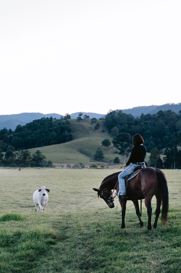 """Maree is most content with Louis, her cattle and horses down the paddock. """"My parents started this from almost nothing and built what I'm able to enjoy now,"""" Maree says. I'm determined to build on what they started. I miss my parents so much, but living in this house, I feel like they're with me every single day."""" The second cottage at Conondale Station is available for rent via [Airbnb](https://www.airbnb.com.au/rooms/21769043?s
