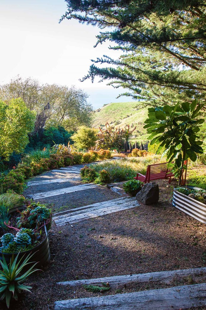 Wide-berth steps lead the eye through a sheltered area to the vista beyond. Jill composes her garden plantings to sit well against their wetland and forest backdrops. | Photo: Claire Takacs