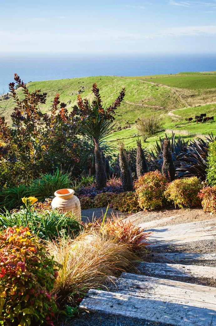 """Jill, who designed gardens for a living in Christchurch before purchasing the property in Akaroa, explains, """"I kept trying to capture the essence of a place in a truly New Zealand way with low-growing shrubs and tall, grass-like plants. But then, I'm a gardener so I can't resist colour and foliage contrast experiments as well!""""  