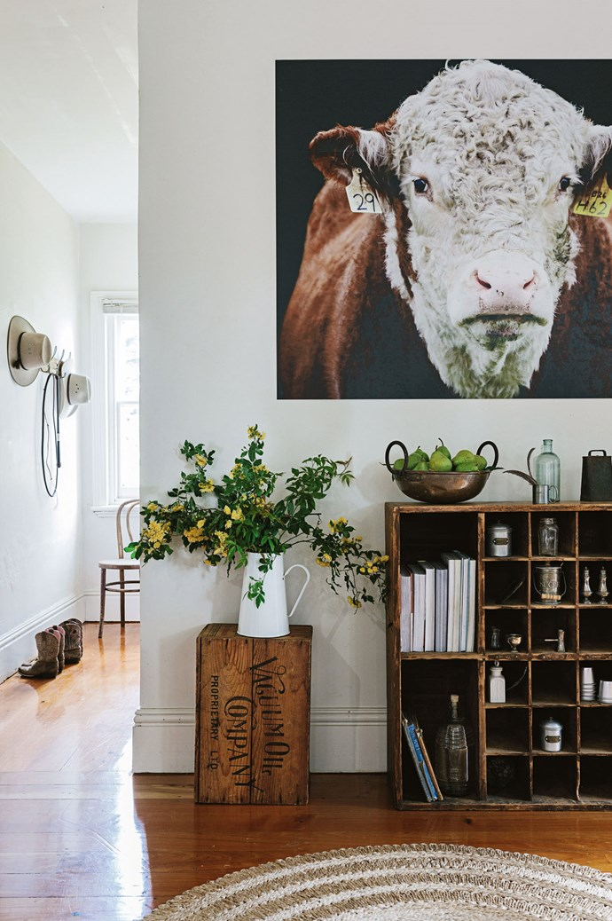 A photograph of one of their last Hereford bulls, by Karla Northcott, hangs above an old pigeon hole cupboard in the kitchen. Megan's love of sourcing homewares and collectables fuels her business [Limewash Vintage](https://www.facebook.com/limewashvintage/), which she runs with her sister Sally. | Photo: Marnie Hawson