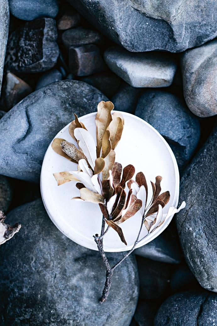 Granite rocks and native vegetation, such as this small branch from a coastal banksia, compose the moodboard of colours and forms that inspire Married To The Sea.