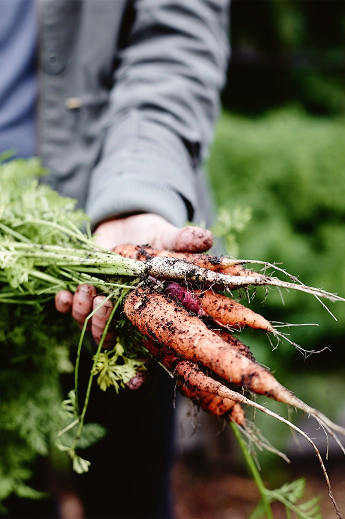 The organic vegetables grown are sold at Margaret River Farmers' Market.  | Photo: Mark Roper
